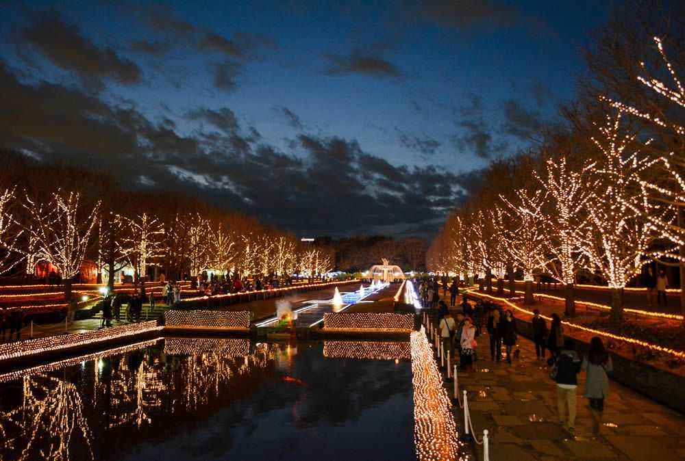 Showa Kinen Park Winter Illumination